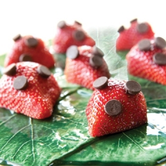 Make strawberries enticing with a few chocolate chips! (Photo credit: Ted Axelrod)
